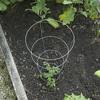 42-in Galvanized Steel Wire Round Tomato Cage