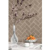 allen + roth Allen and Roth 8-Pack Fawn Ceramic Wall Tile (Common: 3-in x 6-in; Actual: 2.94-in x 5.88-in)