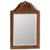 ESTATE by RSI 35-in H x 22-in W Colonial Spiced Cognac Rectangular Bathroom Mirror