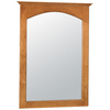 Style Selections 31-in H x 22-in W Euro Style Cinnamon Rectangular Bathroom Mirror