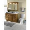 Project Source Golden Traditional Bathroom Vanity (Common: 48-in x 21-in; Actual: 48-in x 21-in)