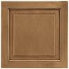 Shenandoah Winchester 14.5-in x 14.5625-in Mocha Glaze Maple Square Cabinet Sample