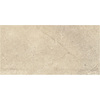 Style Selections Logical Honey Porcelain Floor and Wall Tile (Common: 12-in x 24-in; Actual: 11.75-in x 23.75-in)