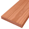 Top Choice #2 Prime Pressure Treated Lumber (Common: 2 x 12 x 16; Actual: 1.5-in x 11.25-in x 192-in)