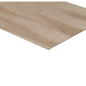 Birch/Maple Plywood (Actual: 0.2-in)
