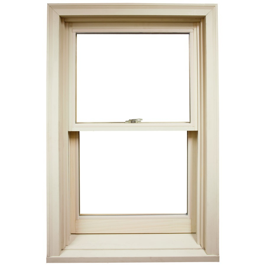 Shop ply gem windows 34 5 in x 4100 series wood for Single hung window