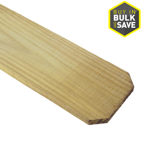 Severe Weather Pressure Treated Pine Fence Picket (Common: 5/8-in x 5-1/2-in x 6-ft; Actual: 0.63-in x 5.5-in x 6-ft)