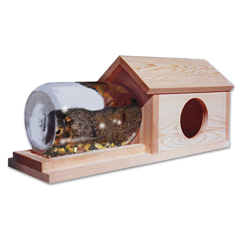 Shop Schrodt Designs Wood Lidded Box Squirrel Feeder At