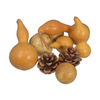 Fantastic Craft Gourd Figurine Indoor Thanksgiving Decoration