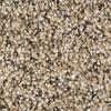 Shaw Stock Essence Textured Indoor Carpet