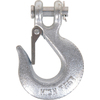 The Hillman Group Forged Clevis Type Slip Hook with Latch