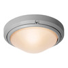 Access Lighting Oceanus 10-1/2-in Satin Outdoor Wall Light