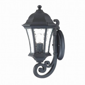 Acclaim Lighting Waverly 16-1/2-in Matte Black Outdoor Wall Light
