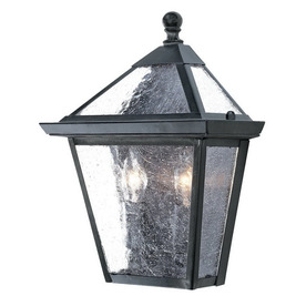 Acclaim Lighting Charleston 10-3/4-in Matte Black Outdoor Wall Light