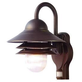 Acclaim Lighting Mariner 13-1/2-in Matte Black Outdoor Wall Light
