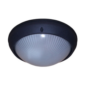 Whitfield Lighting 8-1/4-in Black Outdoor Wall Light