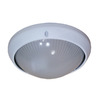 Whitfield Lighting 8-1/4-in White Outdoor Wall Light