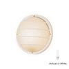 International Lighting 10-in White Outdoor Wall Light ENERGY STAR