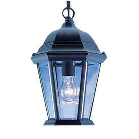 Volume International 14-1/4-in Black Outdoor Pendant Light