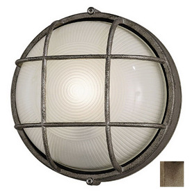 Philips Forecast Oceanview 10-in H Silver Rust Outdoor Wall Light