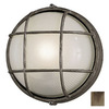 Philips Forecast Oceanview 10-in Silver Rust Outdoor Wall Light