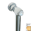 Paul Decorative Products 12-in Polished Gold Wall Mount Grab Bar
