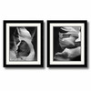Amanti Art 23.62-in W x 27.62-in H Nature Framed Wall Art