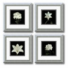 Amanti Art 11.99-in W x 11.99-in H Floral and Still Life Framed Wall Art