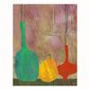 Cascadia 11-in W x 14-in H Frameless Canvas Jugs 2 Print Wall Art