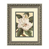 Amanti Art 11.91-in W x 9.91-in H Floral and Still Life Framed Wall Art