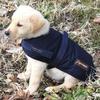 ABO Gear Brown Wool Unisex Coat