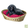 Snoozer Mint Julep Polyester/Cotton Oval Dog Bed