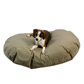 Snoozer Seafoam Polyester/Cotton Oval Dog Bed