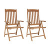 International Home Amazonia 2-Count Teak Folding Patio Dining Chairs