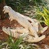 Design Toscano Crocodile Skull 17.5-in Garden Statue