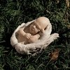 Design Toscano 7.5-in H Nature's Hands Baby Cherub Angel Garden Statue
