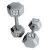 CAP 50-lb Gray Fixed-Weight