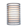 Access Lighting Poseidon 10-3/4-in Satin Outdoor Wall Light