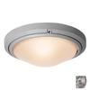 Access Lighting Oceanus 15.75-in W Satin Outdoor Flush-Mount Light
