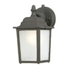 Thomas Lighting Hawthorne 10-in Painted Bronze Outdoor Wall Light