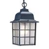 Acclaim Lighting Nautica 12-in Matte Black Hardwired Outdoor Pendant Light