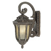 Acclaim Lighting Renaissance 18-in Black Coral Outdoor Wall Light