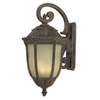 Acclaim Lighting Renaissance 37-1/2-in Black Coral Outdoor Wall Light