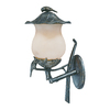 Acclaim Lighting Avian 20.75-in H Black Gold Outdoor Wall Light