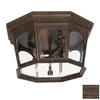 Acclaim Lighting Newcastle 14-in Outdoor Flush-Mount Light