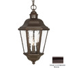 Acclaim Lighting Beaufort 18-1/2-in H Architectural Bronze Outdoor Pendant Light