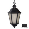 Acclaim Lighting Beaufort 18-1/2-in Matte Black Solar Outdoor Pendant Light ENERGY STAR