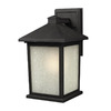 Z-Lite Holbrook 9-3/4-in Black Outdoor Wall Light