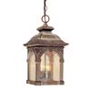 Cascadia Lighting Essex 18-in Royal Bronze Hardwired Outdoor Pendant Light