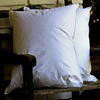 Gotcha Covered Standard Bed Pillow